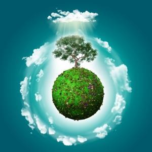 Budi IN... Budi GREEN