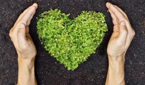 Sačuvajmo okoliš