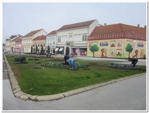 sadnja cvijeća -Zrinski trg